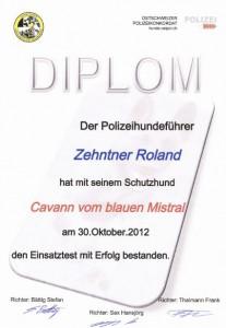 Diplom Cavann